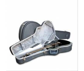 Ashton PLAT500GS Hard Case