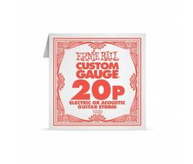 ERNIEBALL P01020.020 PLAIN STEEL Electric/ Acousti